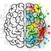 adapting-brains-medium